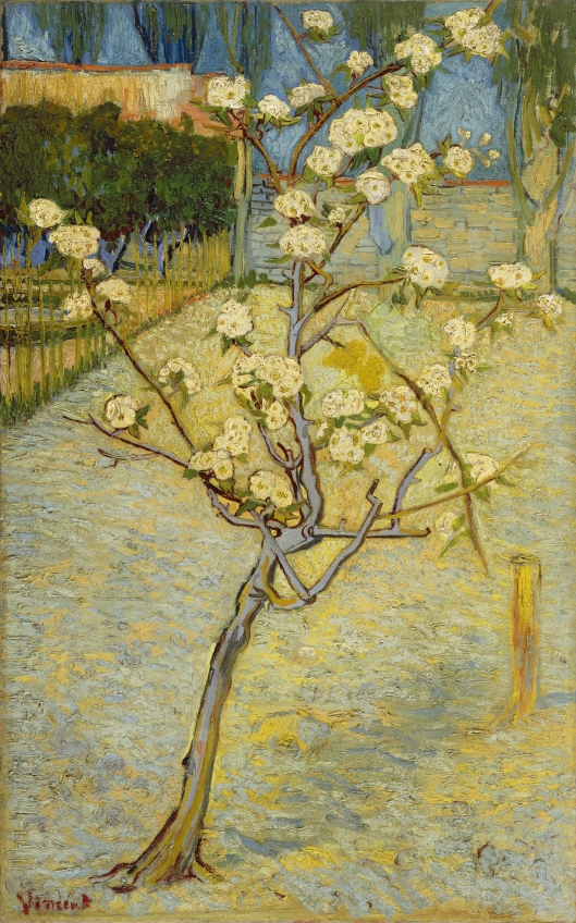 'Small Pear Tree in Blossom' Vincent Van Gogh 1888 {{PD-Art}}