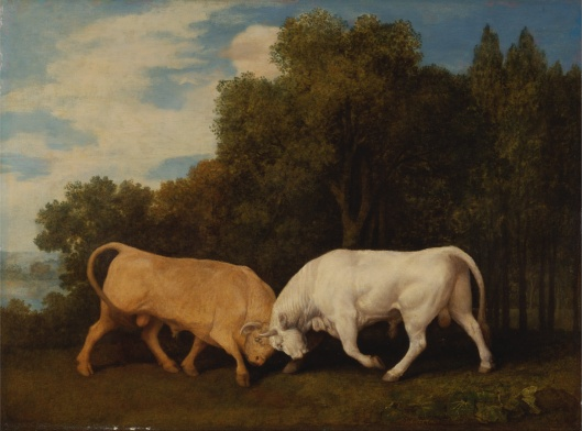 'Bulls Fighting' George Stubbs 1786 {{PD-Art}}
