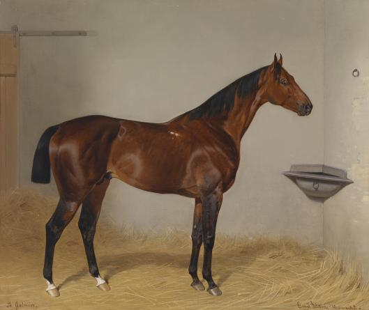 If you must join the race, make sure you have a good horse. 'Portrait of St. Galmier' by Emil Adam c1885 {{PD}}