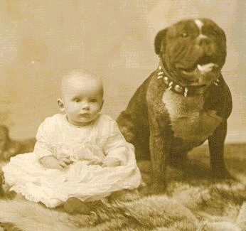 Pit Bull with Baby by Henry J. Walker 1892 {{PD}}