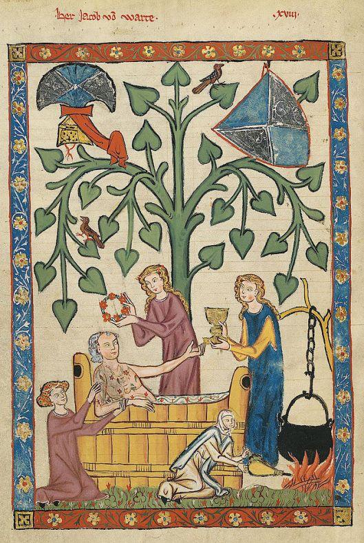 Codex Manesse  Jakob von Warte {{PD}}