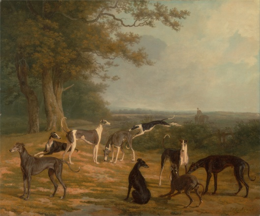 'Nine Greyhounds in a Landscape' Jacques-Laurent Agasse c1807 {{PD}}