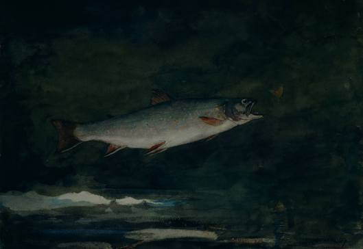 Cancer, use the inspiration and healing potential currently available in Pisces to set you on your way. 'Leaping Trout' Winslow Homer 1889 {{PD}}