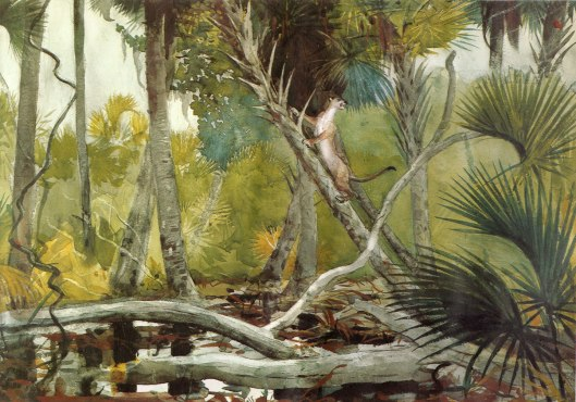 'In the Jungle, Florida' Winslow Homer 1904 {{PD}}