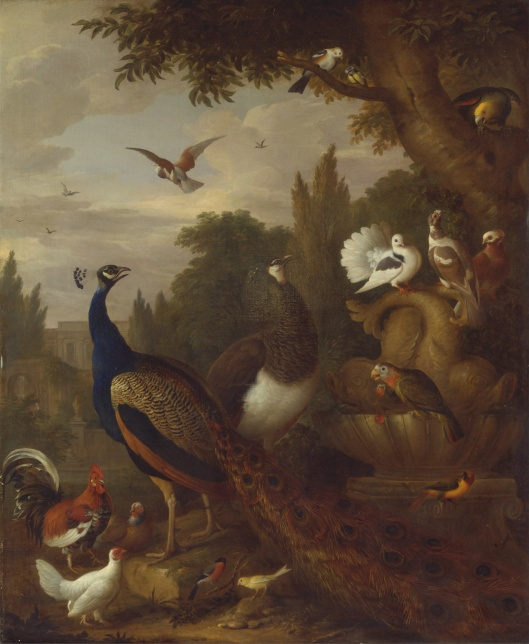 You could even charm the most cantankerous Juno in your life right now, Virgo. 'Peacock, peahen, parrots, canary, and other birds in a park' by Jakob Bogdani c1709 {{PD}}