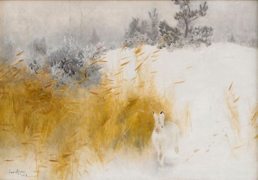 Bruno Liljefors - Winter Hare 1928 {{PD}}