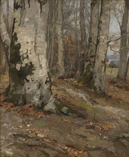 'Skogsinteriør med bøk' (1895) by Jahn Ekenæs - {{PD}}