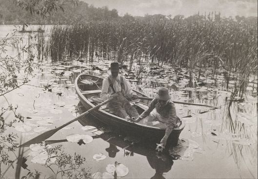 Peter Henry Emerson - 'Gathering Waterlilies' Platinum print from 1886 {{PD}}