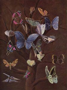 'Butterflies', Wilhelm von Kaulbach, c1860 {{PD}}