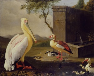 'Pelicans and ducks in a mountain landscape' Adriaen Coorte 17th century {{PD}}