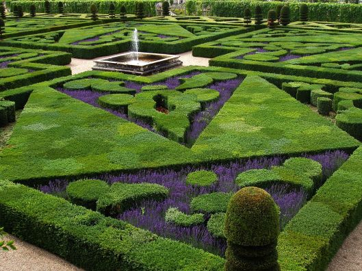French formal garden, Château de Villandry (France) Photo By Aernoudts jean, CC BY-SA 3.0, https://commons.wikimedia.org/w/index.php?curid=1165380